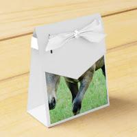 caixa.regal_-1