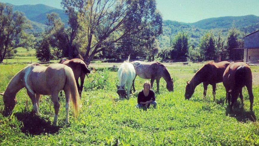 equanima un dia de cavalls (2)